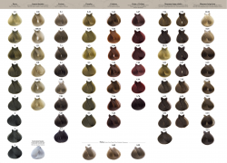 Colour chart ORGANIC CARE permanent dyes (printed) Tahe